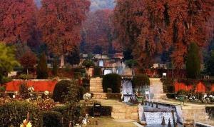 Nishat - ogrody w Srinagarze
